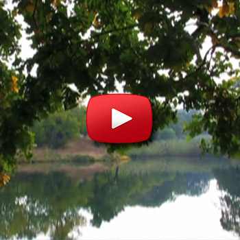 Relaxation Video 10 thumb